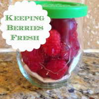 Keeping Raspberries Fresh